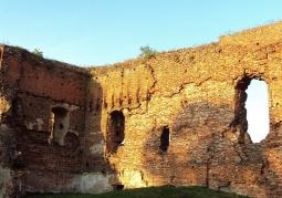 Ruiny Zamku Radzikowskich - Radziki Duże