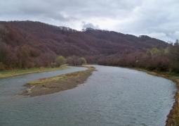 Rezerwat przyrody Krywe - Park Krajobrazowy Doliny Sanu