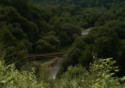 Osława Gorge nature reserve near Duszatyn