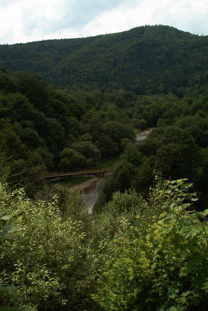 Rzeka Osława niedaleko Duszatyna