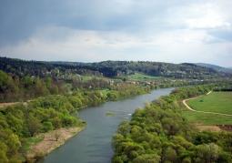 Rezerwat przyrody Góra Sobień