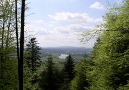 Rezerwat przyrody Polanki - Park Krajobrazowy Gór Słonnych
