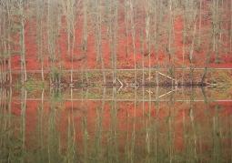 Rezerwat Krajobrazowy 'Dolina Pięciu Jezior'