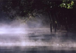 Krutynia in the fog
