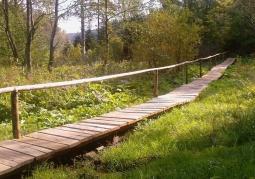 Rezerwat przyrody Mójka