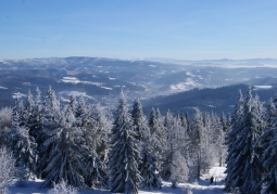 Czantoria Reserve in winter