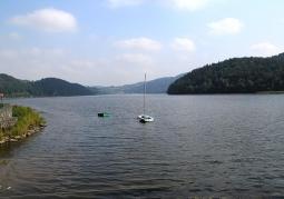 Jezioro Czchowskie lasy