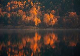 Pogórze Rożnowskie  jesień