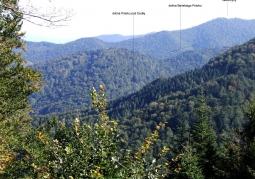 Baniska Nature Reserve