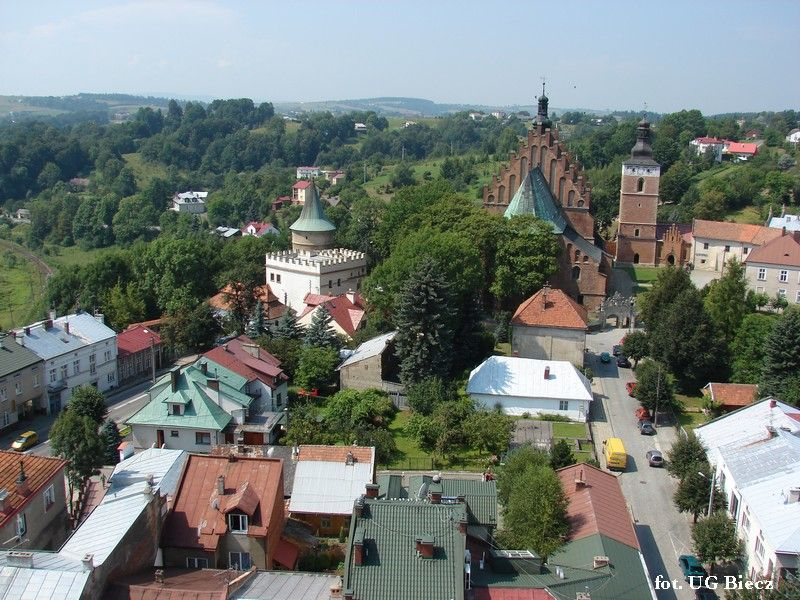 Viewpoint from the Town Hall Tower