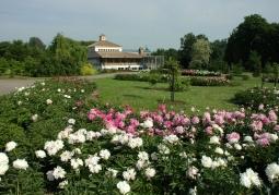 Ogród Botaniczny UAM