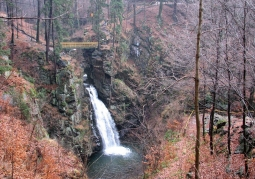 Wodospad Wilczki las