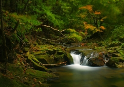 Magura National Park