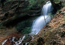 Wodospad Magurski - Magurski Park Narodowy