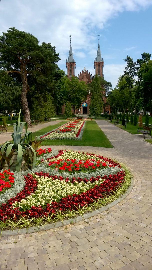 Dywany kwiatowe w parku w Ciechocinku