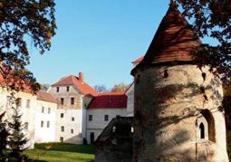 Bastejowy Zamek Szlachecki - Witostowice