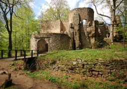 Zamek Bolczów - Janowice Wielkie