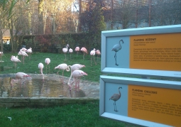 Ogród zoologiczny w Krakowie