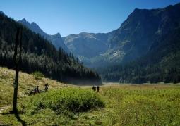 Dolina Małej Łąki - Tatrzański Park Narodowy
