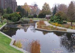 Basen dla roślin wodnych