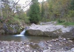 Stream in the reserve area