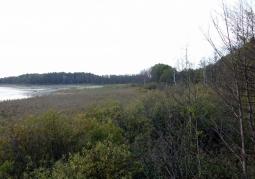 Żółwiowe Błota Nature Reserve