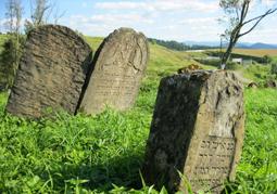 Cmentarz żydowski (Kirkut)