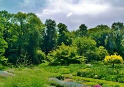 Główna alejka ogrodu botanicznego