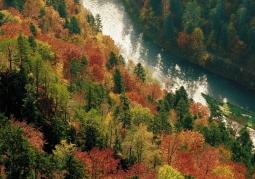 Widok z Sokolicy na Dunajec