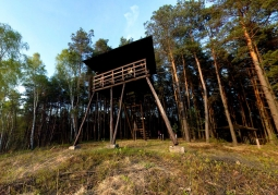 Observation tower on the edge of Durny Swamp