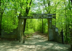 Wejście do arboretum