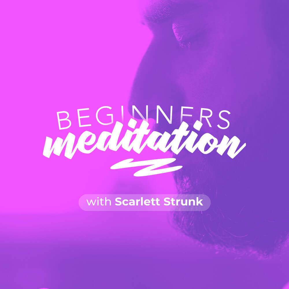 Beginners Meditation - Voice Only