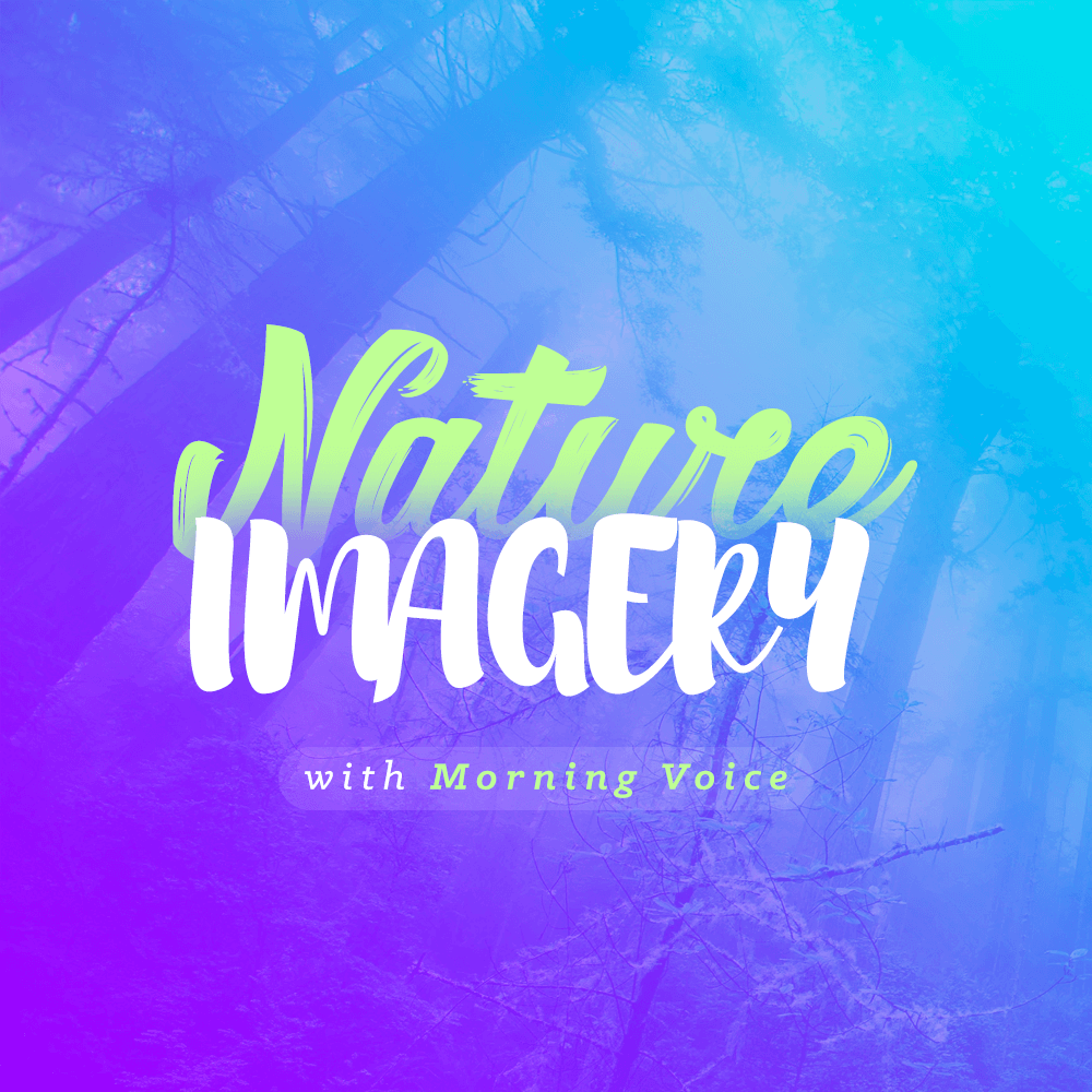 Nature Imagery